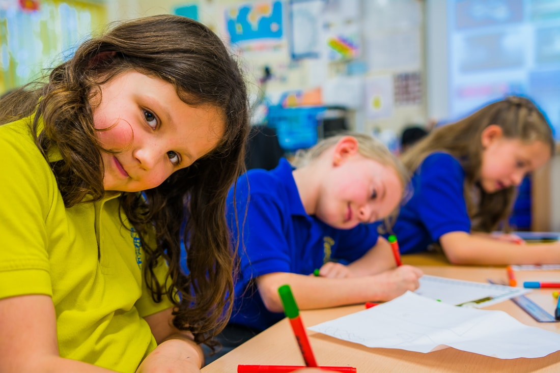 primary school homework help